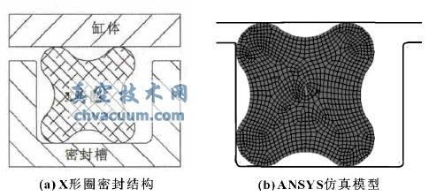 X 形圈密封结构及其仿真模型