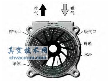 液环泵工作原理图