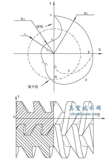 端面型线及其转子模型